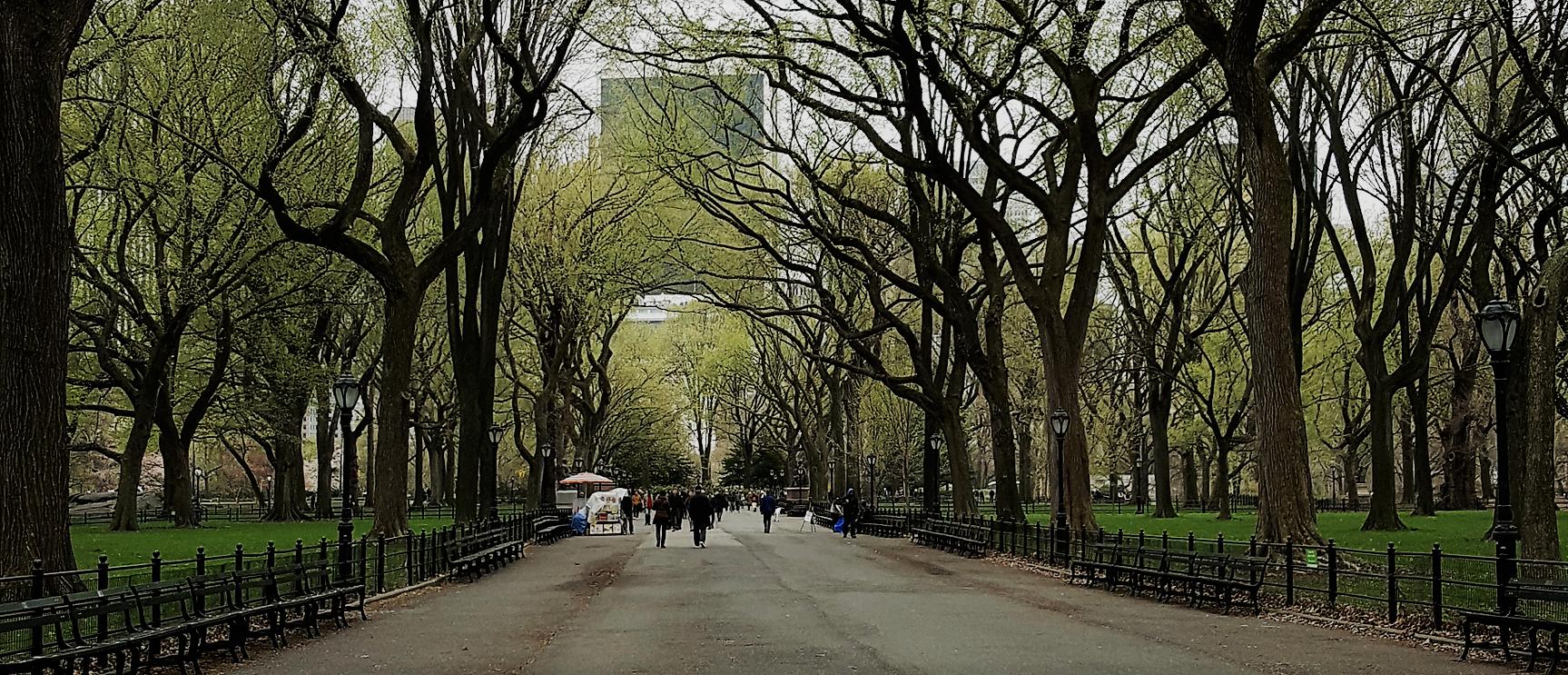 Central Park Promenade in early spring