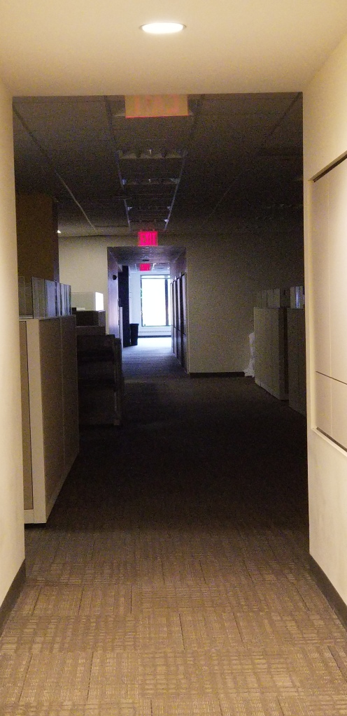 Photo of an office hall, emergency lights on only.