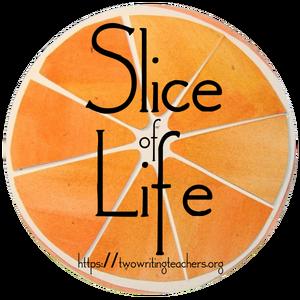 Slice of Life logo